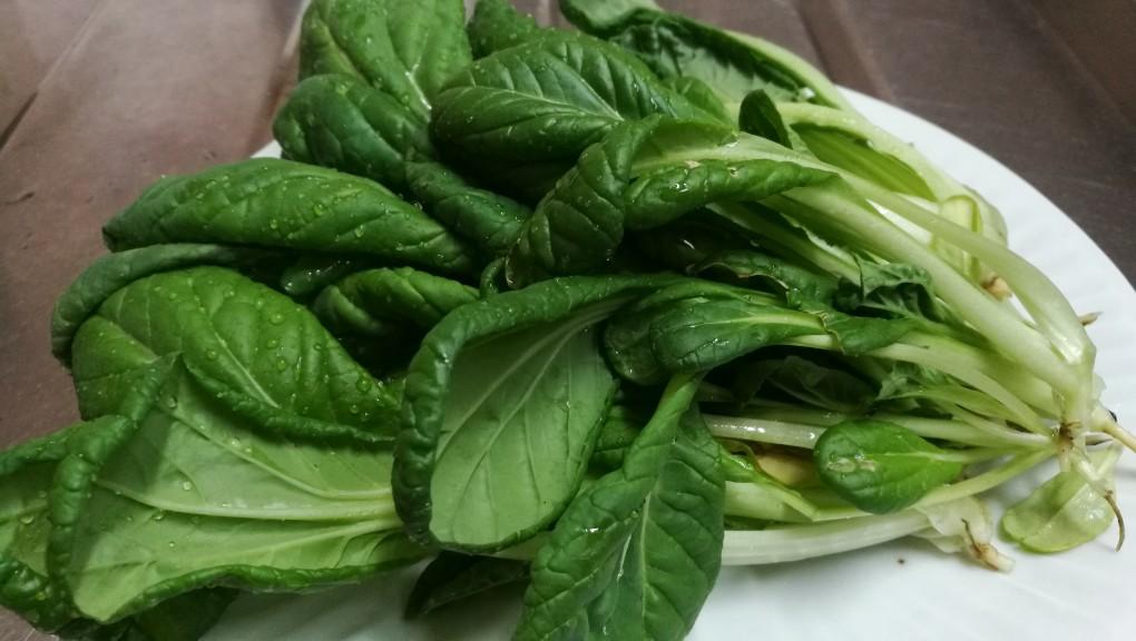収穫したビタミン菜(全粒粉小麦)